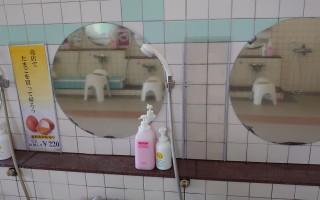 道の尾温泉 浴室鏡横スペース